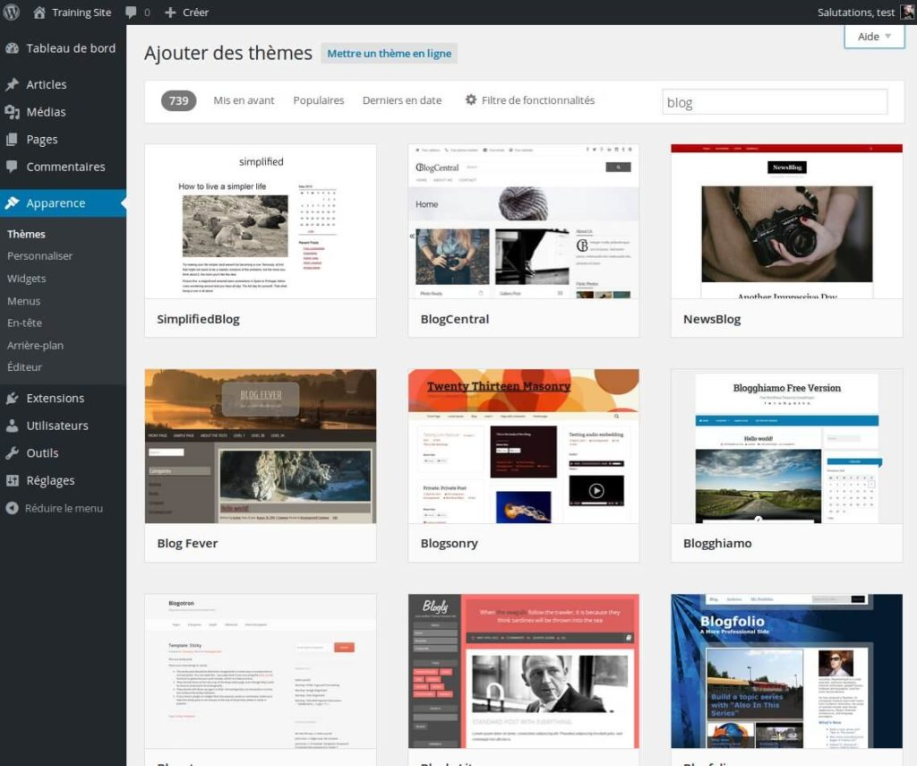 06-installer-theme-wordpress