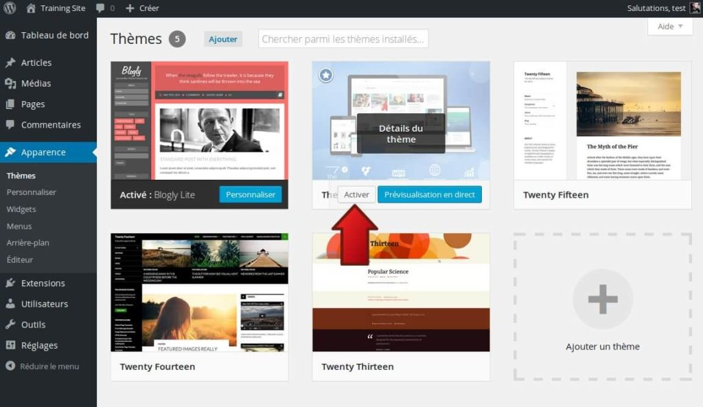 21-installer-theme-wordpress