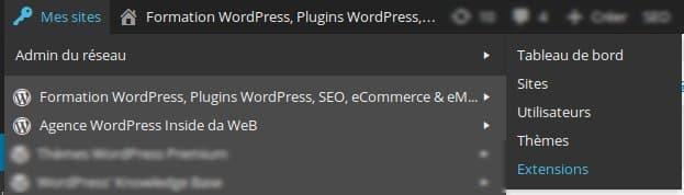 Installation-Plugins-WordPress-Multisites-1