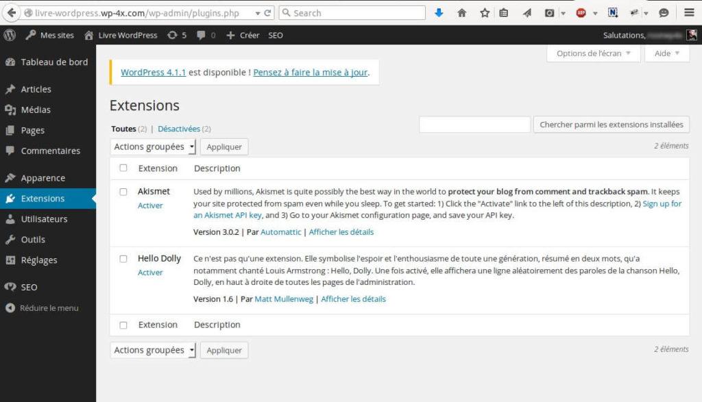 Installation-Plugins-WordPress-Multisites-12