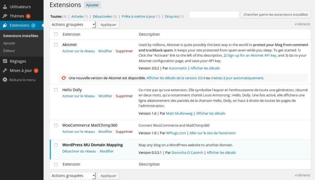 Installation-Plugins-WordPress-Multisites-2